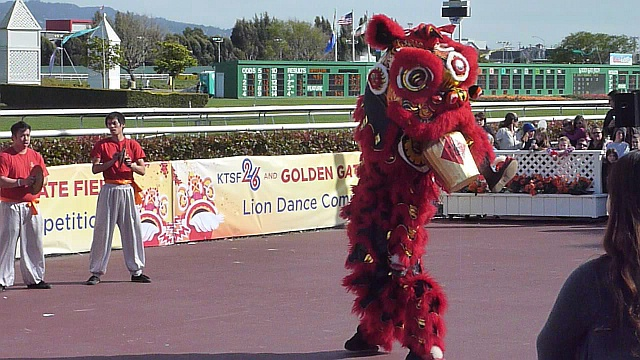 Rising Phoenix Lion Dance